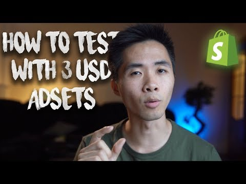 😱How To Test a Product For Only $10-15 | Shopify Dropshipping Journey 2018