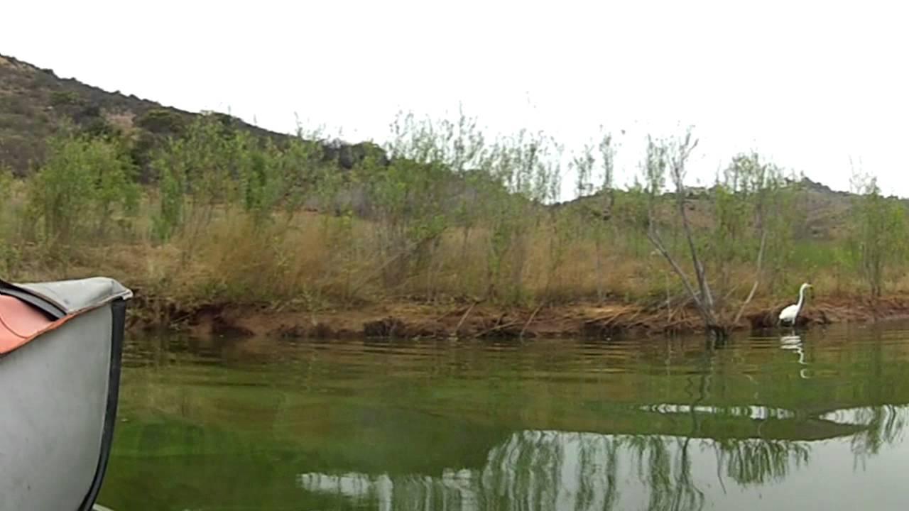 Kayaking lake hodges escondido ca fishing dome for Lake hodges fishing