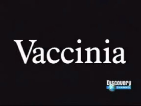 Documental de los virus