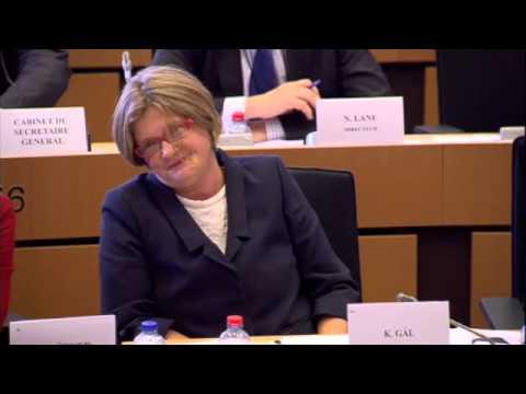 Gál Kinga kérdezte Frans Timmermans uniós biztos jelöltet