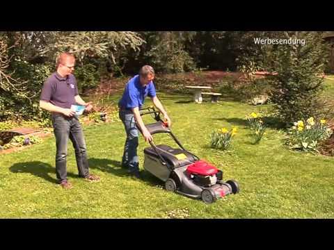 Fachmagazin Knorr: Alles Rund Um Die Rasenpflege