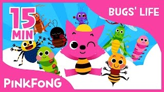 Bugs' Life | Ants in My Pants and more | +Compilation | Bug Songs | Pinkfong Songs for Children