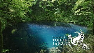 Fresh Green in Tohoku, Japan 4K (Ultra HD) - 東北の春