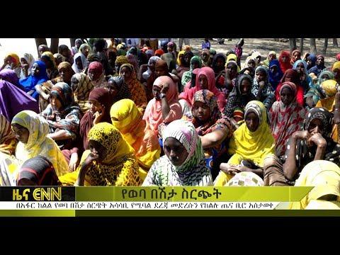 ENN: Malaria Reaches Critical Situation In Affar - በአፋር ክልል የወባ በሽታ ስርጭት አሳሳቢ ደረጃ ላይ ደርሷል ተባለ
