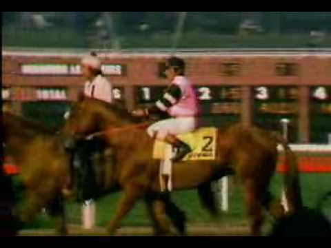 Affirmed victorious in the 1979 Hollywood Gold Cup