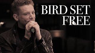 download lagu Aidan Martin - Bird Set Free - Sia - gratis
