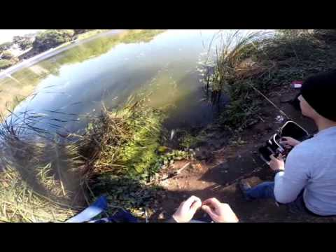 Trout action at lake temescal double limit youtube for Lake temescal fishing