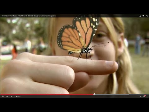 """""""Goin' Down To Mexico (The Monarch Butterfly Song)"""" about monarch migrations"""