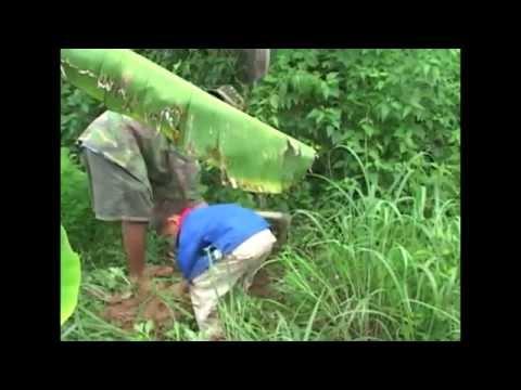 Travel - Family trip to Laos. Peb tsev neeg mus ua si. P1/10 (HD)