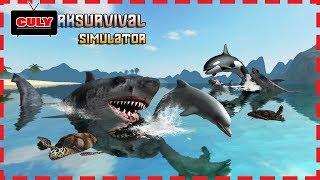 Cá mập trắng săn mồi chim hải âu rùa great white shark simulator cu lỳ chơi game lồng tiếng vui nhộn
