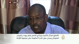 القطع الجائر للأشجار خطر يهدد بتصحر الصومال
