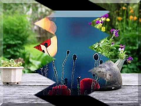 Best Garden  In Summer 2011