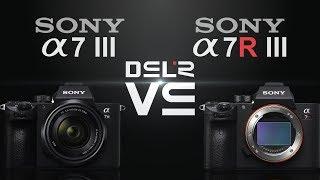 Sony alpha a7 III vs Sony alpha a7R III
