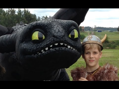 The Real Toothless. How To Train Your Dragon 2 toys and TV show