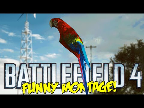 Battlefield 4 Funny Montage!  Blow up sun Easter Egg ,Magic Parrot & More (BF4 Funny Moments)