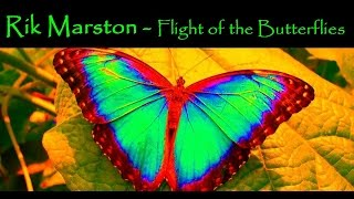 """Rik Marston """"Flight Of The Butterflies"""" Ambient Chill New Age CD Synthesizer"""