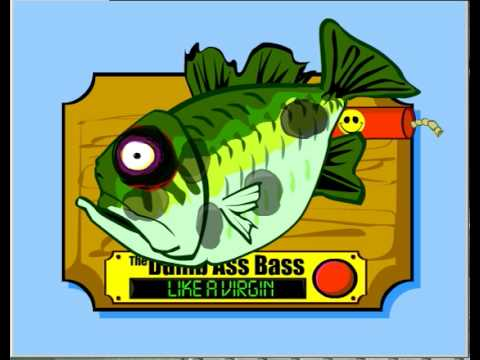 The Dumb Ass Bass