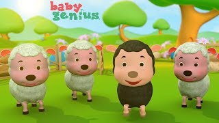 Baa Baa Black Sheep with Lyrics - Kids Songs and Nursery Rhymes by Baby Genius