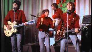 Watch Monkees The Kind Of Girl I Could Love video