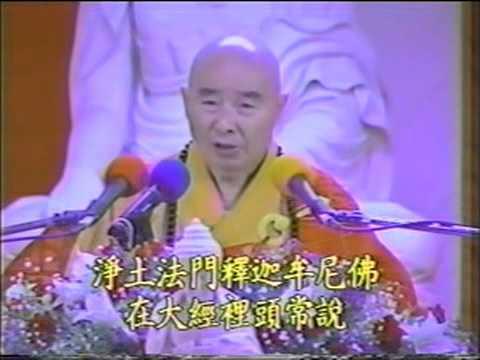 Kinh Vô Lượng Thọ (1994) Tập 28 - PS Tịnh Không