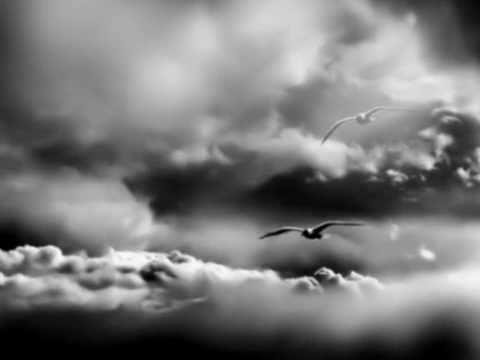 Laura Pausini-Dove l