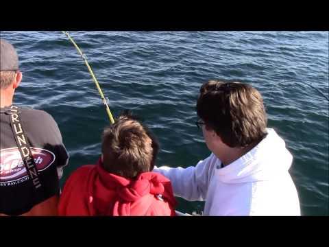 Rock Cod Fishery Comercial