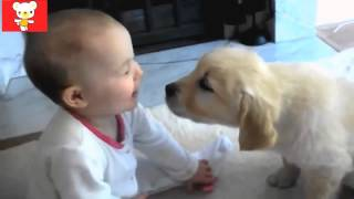 Дети и животные 5 ● Приколы с животными осень 2014 ● Dogs & Cute Babies Compilation ● Part 5