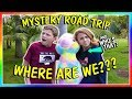 MYSTERY ROAD TRIP TO We Are The Davises mp3