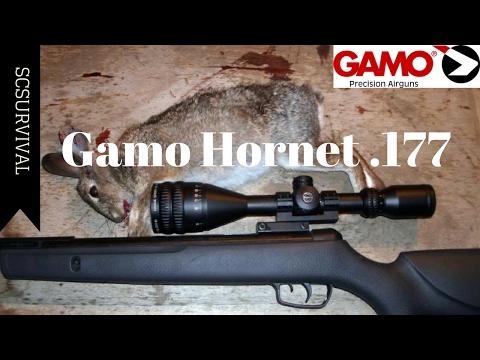 Gamo Hornet Pellet Rifle .177 Caliber Table-Top Review