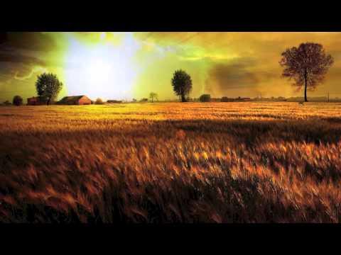 David Ruis - Break Dividing Walls