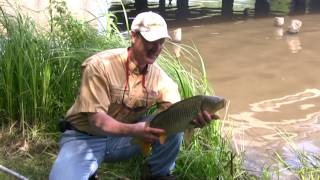 Tips on Carp Fishing from Shore Using Corn and the T-Turn