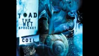 Watch Toad The Wet Sprocket Acid video