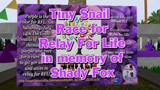 Giant snail race 524 18 July 14 RFL Shady Fox Memorial