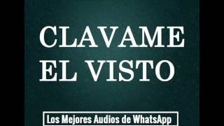 CLAVAME EL VISTO - Los Mejores Audios De WhatsApp