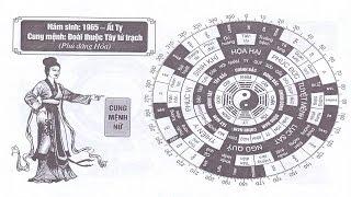 TỬ VI NỮ SINH NĂM 1965 - ẤT TỴ CUNG MỆNH PHONG THỦY HỢP TUỔI GÌ?