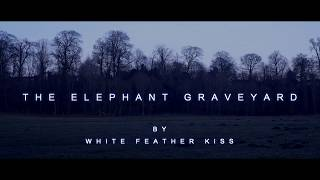 """The Elephant Graveyard"" OFFICIAL VIDEO"