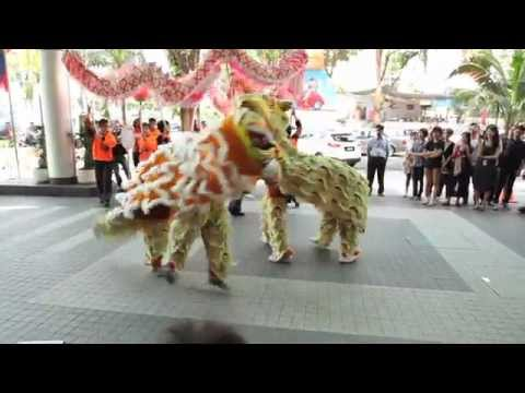 The Tiger Chinese New Year Shuffle
