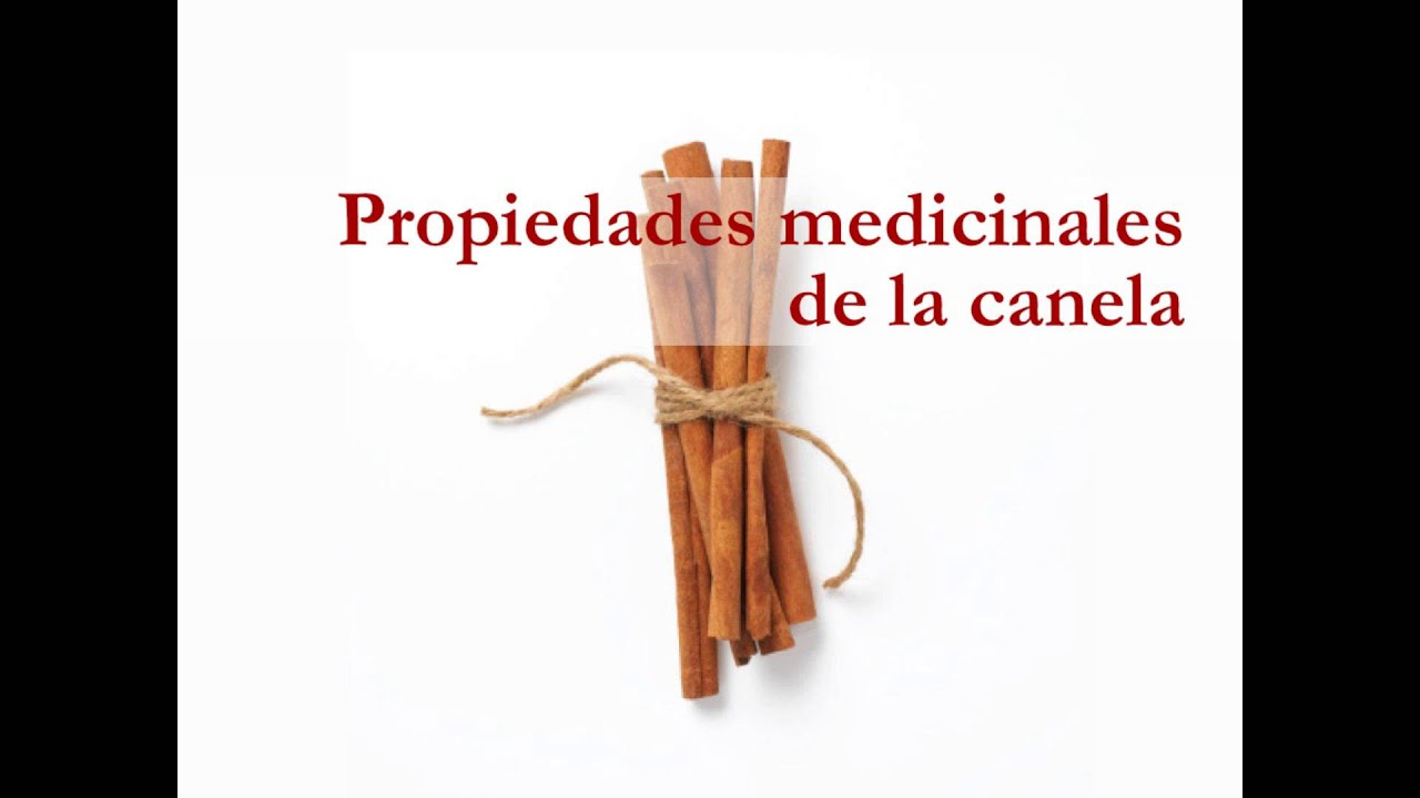 Propiedades medicinales de la canela - YouTube