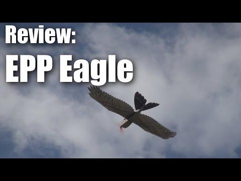 Review: EPP Eagle from HobbyKing
