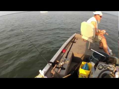 Lake Tawakoni Striper & Hybrid fishing
