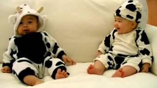 Cười bể bụng - 2 bé sinh đôi, siêu CUTE