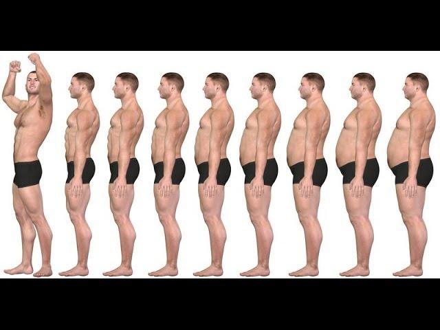 9 factores para la perdida de grasa y definición muscular