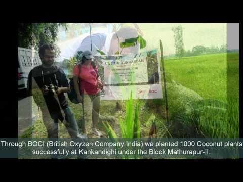 Coconut Tree Plantation under Project NarKEL by MUKTI