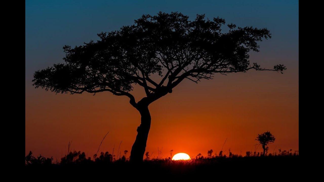 Nature Images Slideshow Photo Slideshow of Madagascars