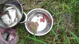 Уха  без чистки чешуи у рыбы