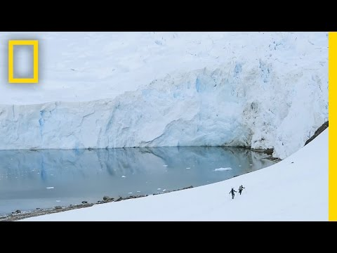 See the Extreme Ice Changes Near the Antarctic Peninsula