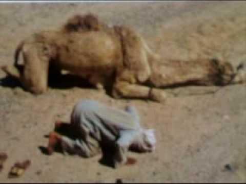 Fantastic images of Muslims !!! صور عجيبة للمسلمين في أنحاء العالم