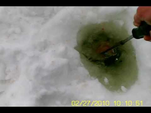 снасти для ловли налима зимой на онеге