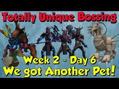 Week 2, Day 6 - Second Pet Down! [Runescape 3] Totally Unique Bossing #13