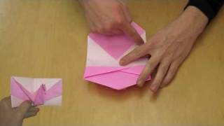 Easy Origami 'pop Up' Bird Card Instructions